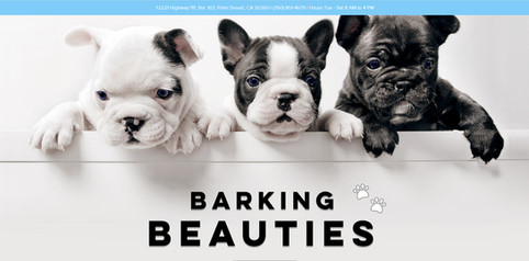 Barking Beauties Website
