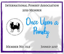 IPA 2019 Badge.jpg
