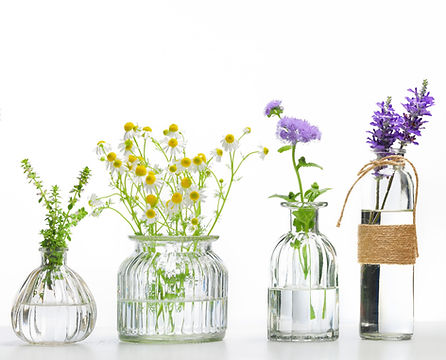 Vitamins and herbs suggesting health and wellness naturally