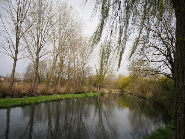 Photo parcours de pêche des fontaines ciel dégagé canal saule peuplier