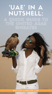 UAE In A Nutshell.png