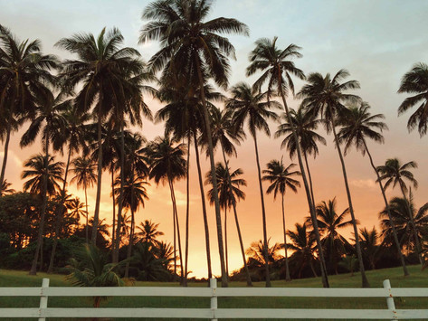 A Tropical Thanksgiving: 4 Reasons To Celebrate Thanksgiving In Barbados