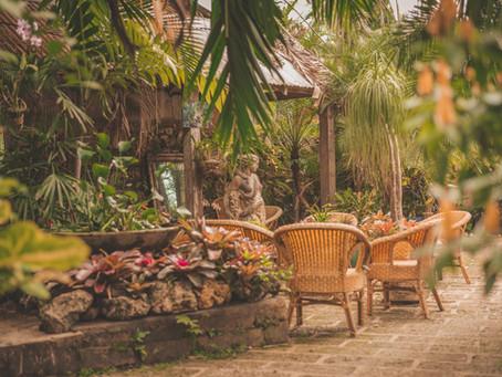 Hunte's Gardens Barbados | Unwind and Unplug