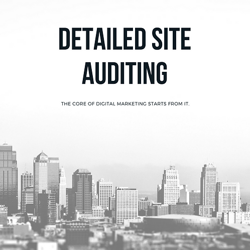Detailed Site Auditing