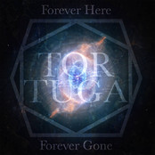 Forever Here, Forever Gone