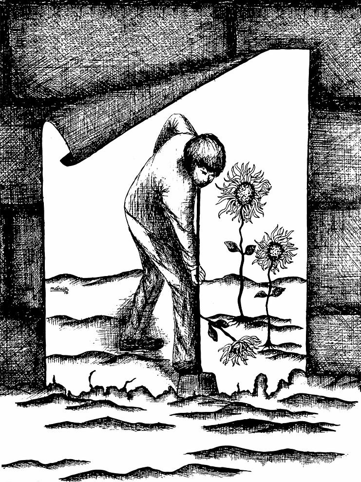 ilustração marcia cardeal