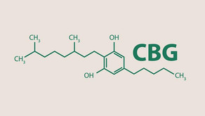 CBG – A powerful new Cannabinoid entering the skincare market.