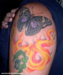 sean_butterfly