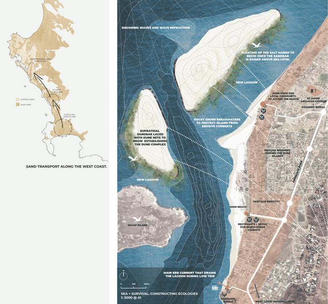 Establishing the Dune Complex, Breakwaters + Salt Marshes