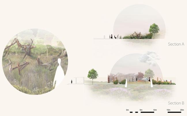 The Healing Garden: Sections