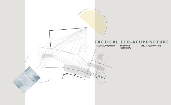 Tactical Eco-Acupuncture