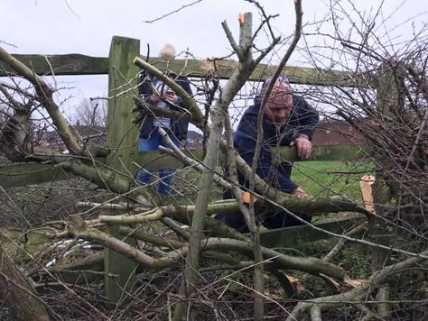 Dragged through a hedge forwards...