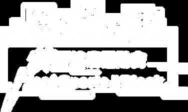 Flashsports logo_v1-08.png