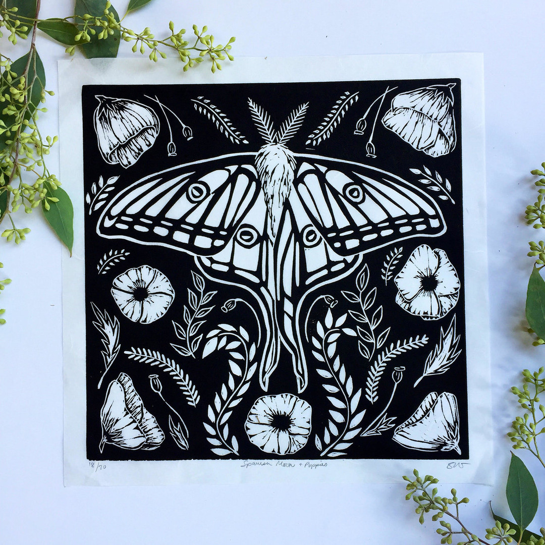Spanish Moth_Sunny Mullarkey.jpg