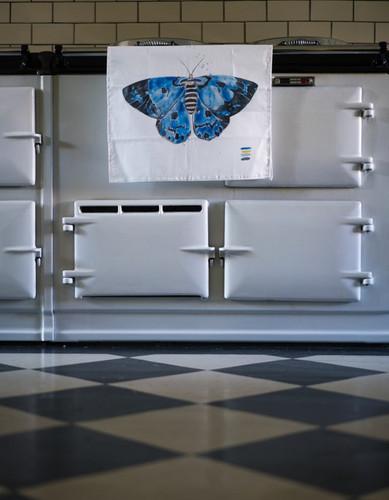 blue tiger moth towel highbrow hippie.jp