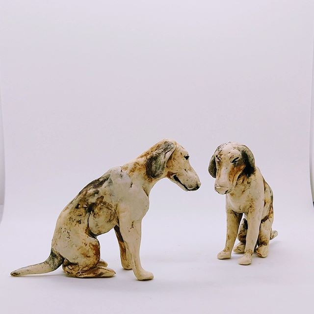 Look at these hound dogs. They are defin