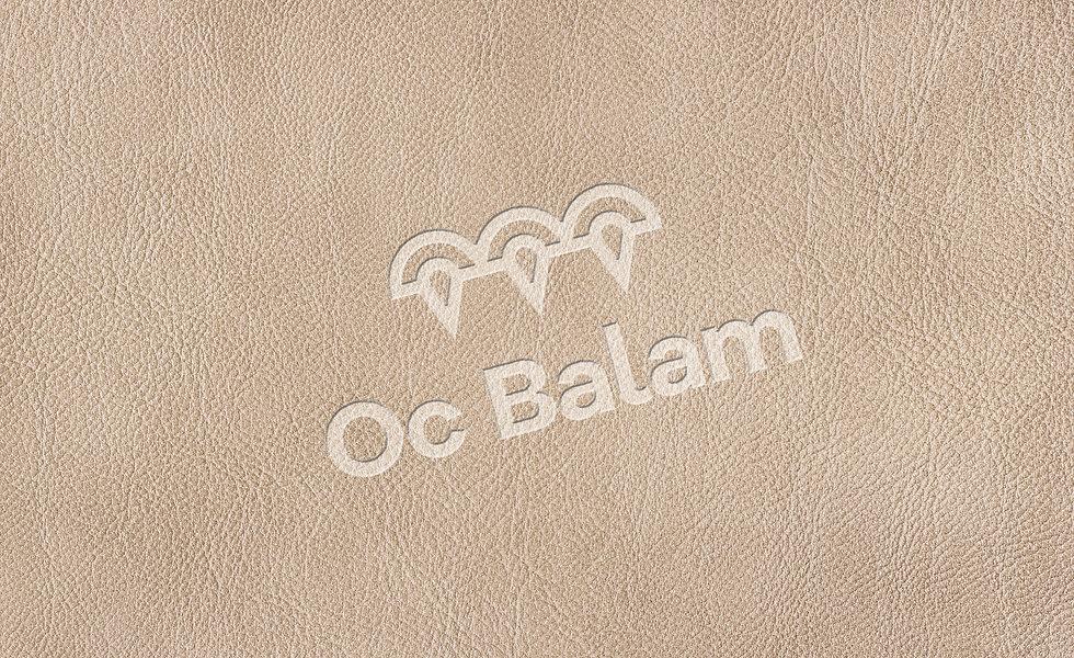 OcBalam_artesII-5.jpg