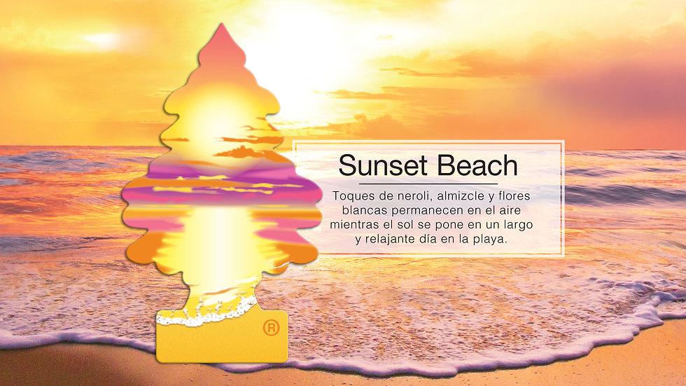 KV_FRAG_T_SUNSET-BEACH_PPT.jpg
