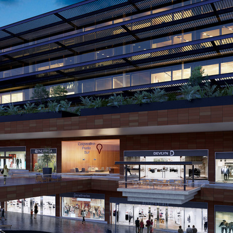Centro Comercial Punto Sur, Guadalajara