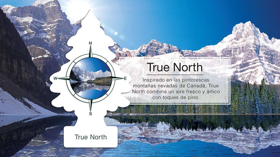 KV_FRAG_T_TRUE-NORTH_PPT-min.jpg