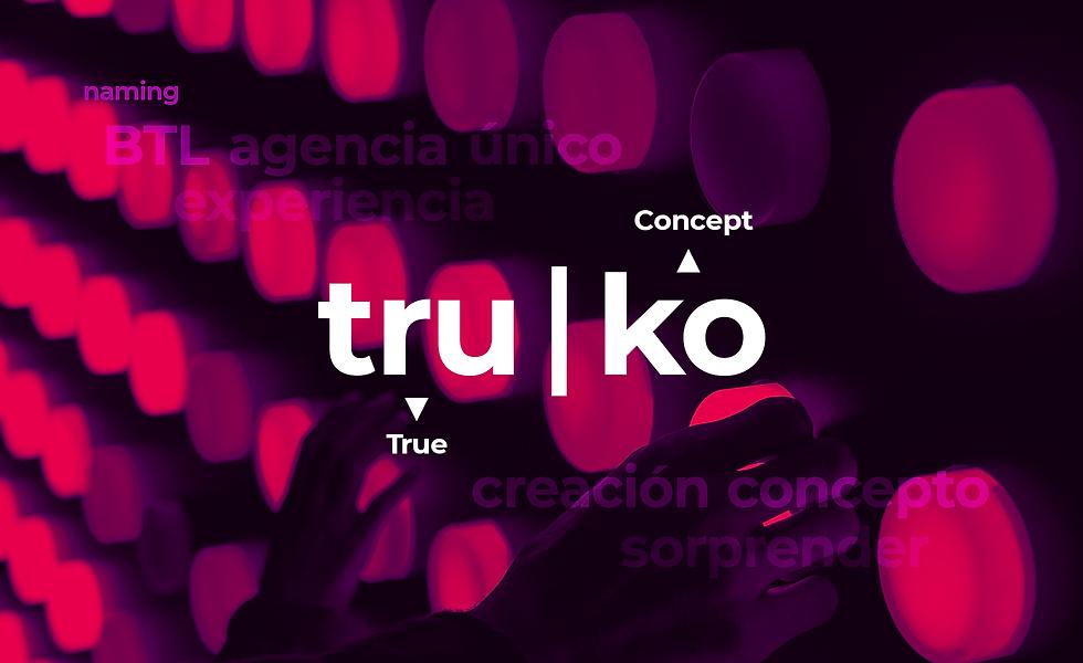 Truko2-min.png