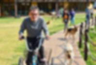 Hombre con discapacidad intelectual pasea en bicicleta acompañado e perros