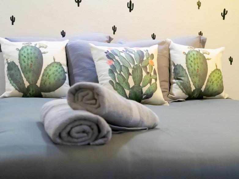 kaktus2-04350-min.jpg