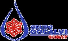 Logo GOCALVI 02.png