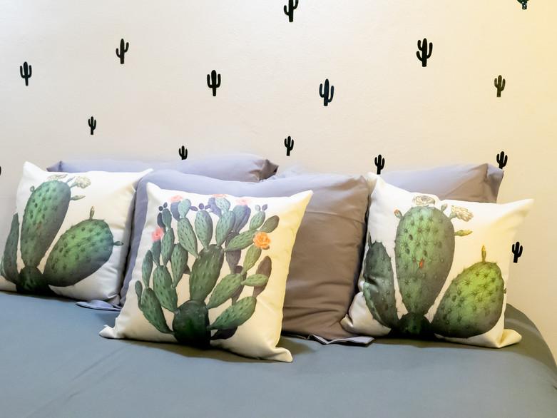 kaktus2-04351-min.jpg