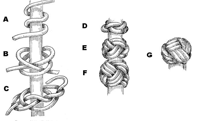 Turk's Head knot chart