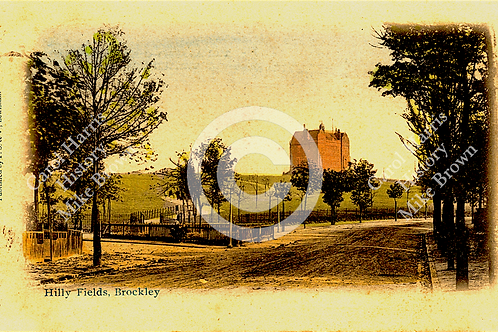 Hilly Fields, Adelaide Avenue  - Print