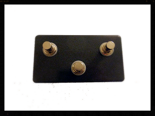 Auxiliary Pedal for Digitech