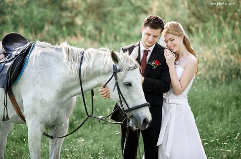 Свадебная фотосесси с лошадьми