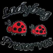 Ladybug preserves.png