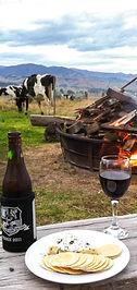Drinks & Cows.jpg