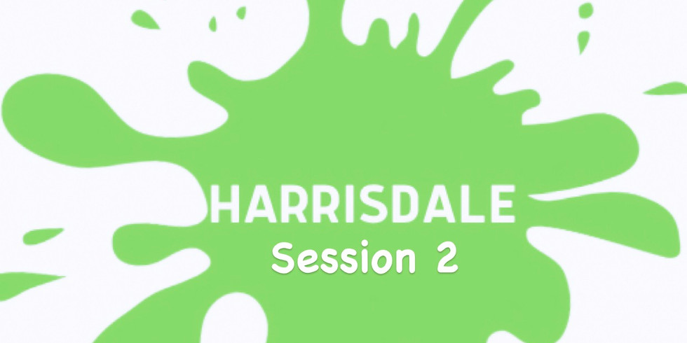 Messy Mat Harrisdale - BIG BIRTHDAY BASH  2