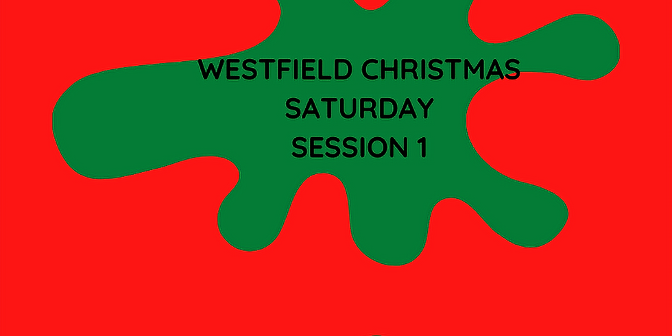 WESTFIELD CHRISTMAS SATURDAY SESSION 1