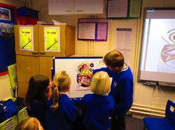 Kandinsky Whole School Project - Art