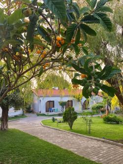 Rooms in garden