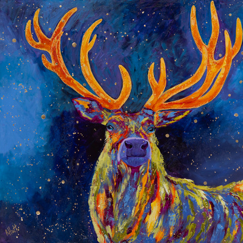 Stag at Night
