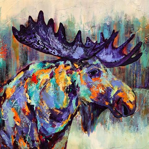 Moose Musings