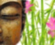 Reiki Karuna Compassion