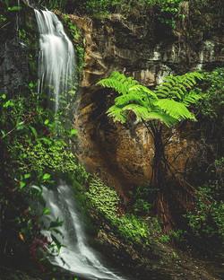 Long exposure of Mokoroa falls_._._