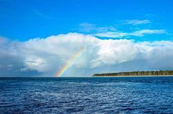 Matakana island_._._._._._