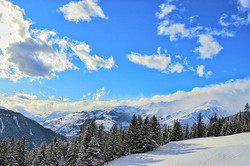 #bluesky #clouds #mountains #trees #sun