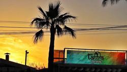 #sunset #palm #silouette #bars #yellow #