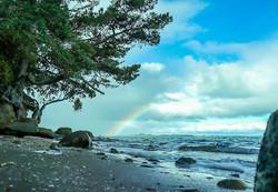 #rainbow #ocean #savetheocean #island #c