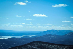 View from a fire tower at the top of a t