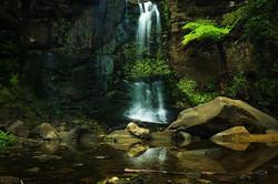 Mokoroa falls. Long exposure. ._._