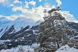 #tree #mountains #clouds #bluesky #perfe